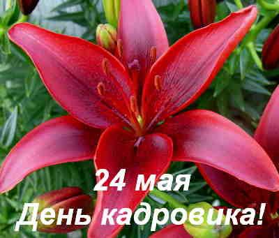24 мая - День кадрового работника в России!