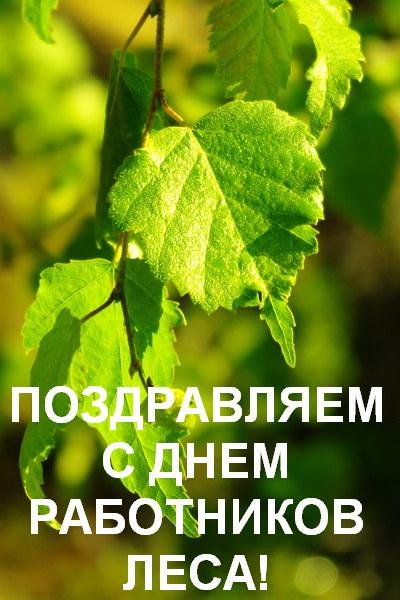Сегодня - День работников леса в России!